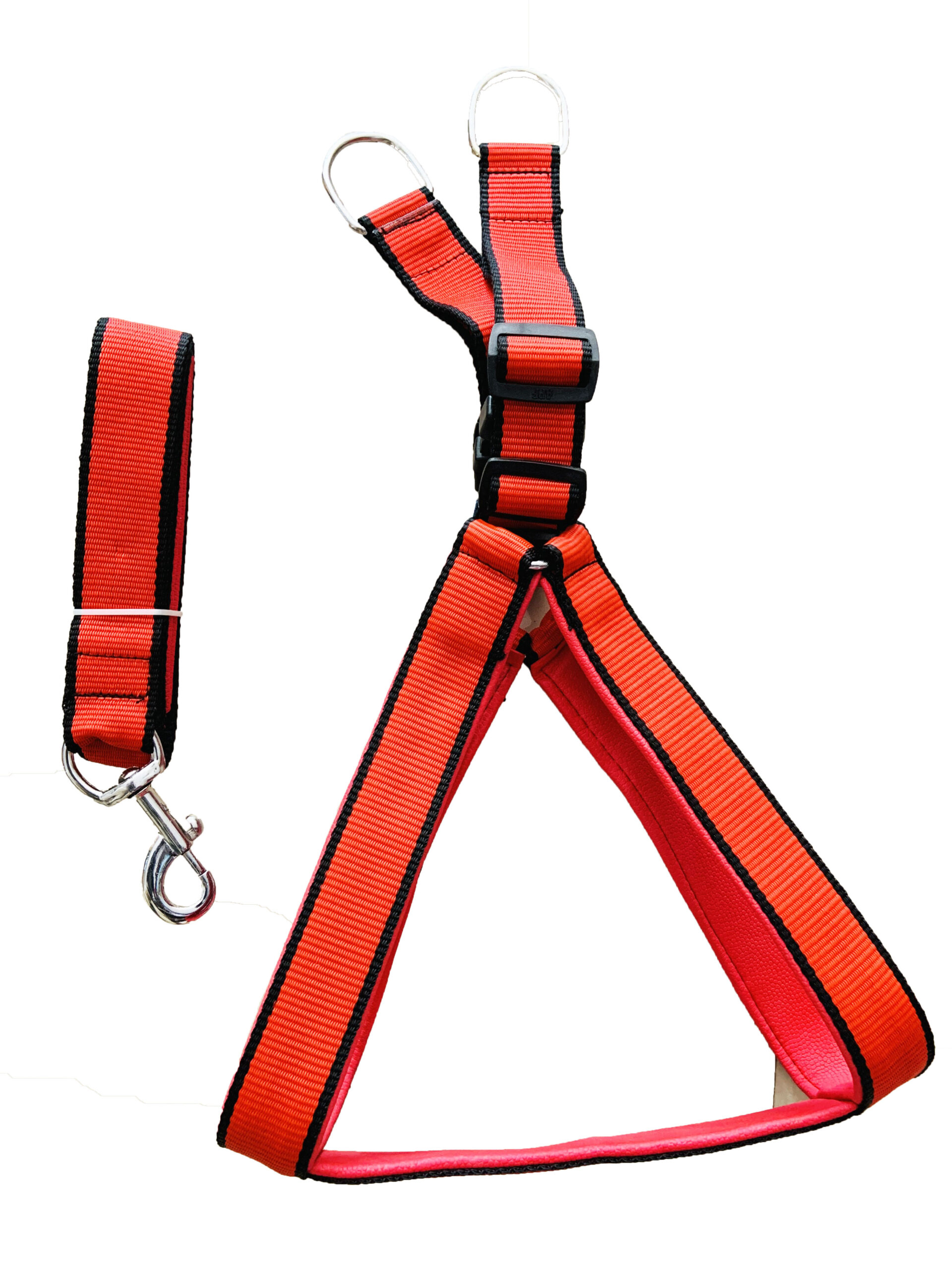 dogs harness