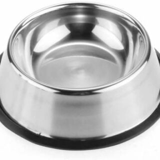Can be used to serve both food and water dog cat